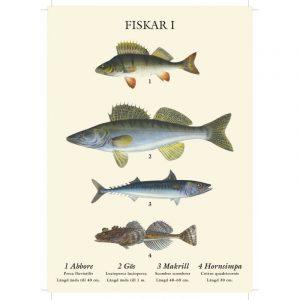 Fiskar plansch